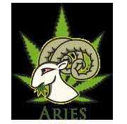 Weekly Horoscopes – Marijuana Horoscopes